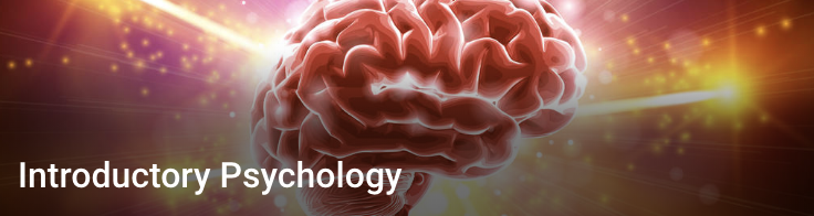 Introductory Psychology